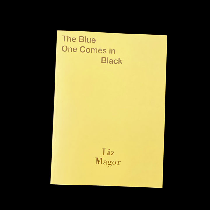 Liz Magor, The Blue One Comes in Black, 2015
